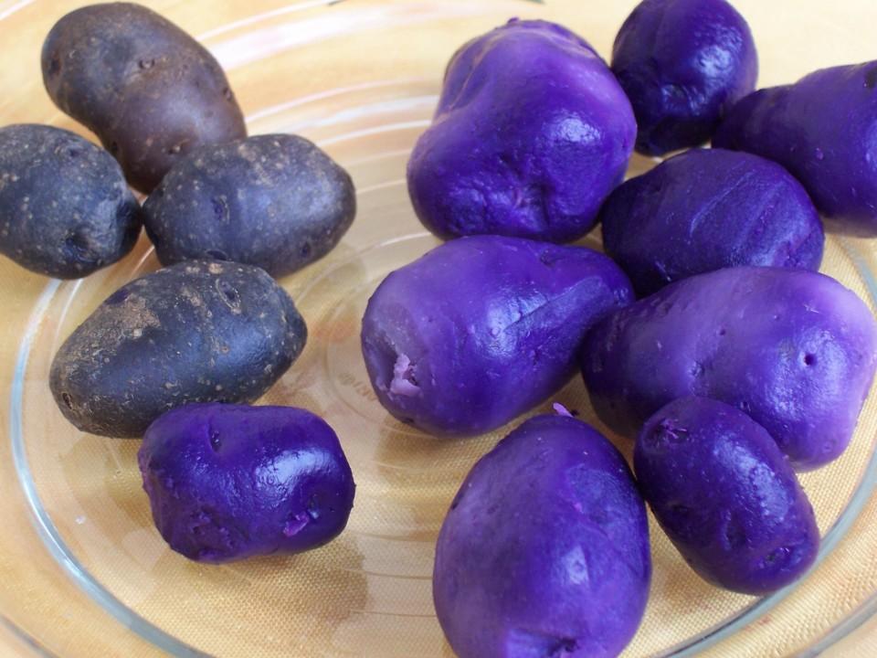 Potatoes purple free use