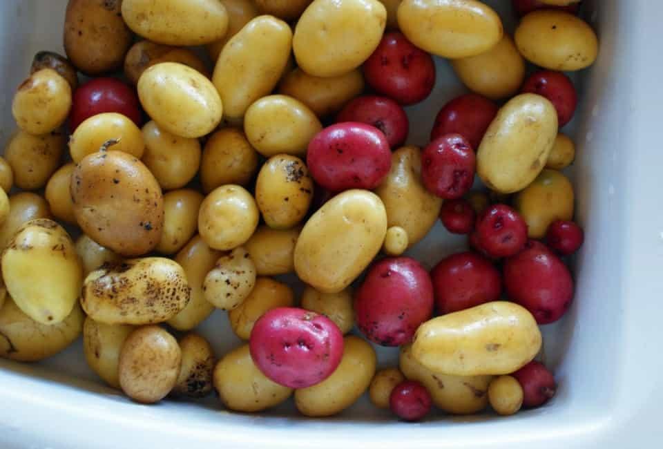 potatoes new