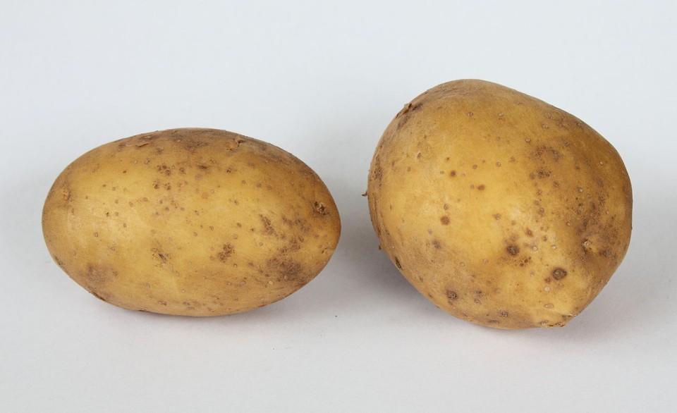 white potato free use